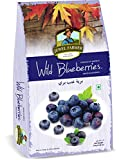 #9: Wild Blue Berries