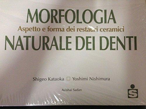 Morfologia naturale dei denti. Aspetto e forma dei restauri ceramici