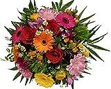 FRÜHLINGSSTRAUß |mit Roten Rosen | Valentinstag | bunter Blumenstrauß |