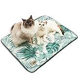 Hianiquaime Coussin Rafraîchissant Lavable pour Chien Chat Tapis Refroidissant Animal de Compagnie Confort Couchage Lit Dehoussable Vert S M L 50x38cm 65x47cm 80x63cm