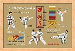 broderie taekwondo à broder au point de croix sur toile aida 5.5 collection planète mauve