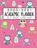 2020-2021 Academic Planner July 2020 - June 2021: Pink Owls Edition; Includes 2 Years Calendar, Monthly, Weekly & Daily Planner Schedule & Agenda (Large Size 8.5x11
