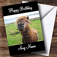 Shetland Pony Personalised Birthday Card