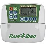 Rain Bird RZX8I - Programador de riego eléctrico interior, 26.5 x 7.5 x 16.5 cm, color gris