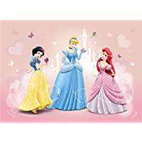Olimpia Design Foto Carta da Disney Princesses, 1 pezzi, 4 – 009dp4