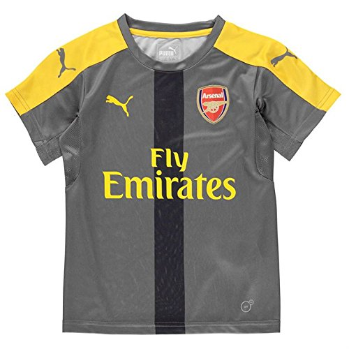 Arsenal FC 2016/17 Training Jersey - Youth - Steel Grey/High Risk Red