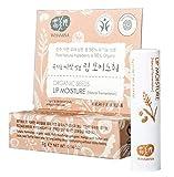 WHAMISA Organic Seeds Lip Moisture - Zarte Lippenpflege mit Sanftem Duft - 99.9% Natürliche Inhaltsstoffe - Lippenbalsam für Langanhaltend Weiche Lippen - Koreanische Naturkosmetik Lippenstift - 4g