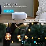 Presa-WiFi-da-Esterno-Impermeabile-Teckin-16A-4000W-Presa-Intelligente-Esterna-con-2-Prese-Telecomando-APP-Casa-Intelligente-Presa-Wi-Fi-Intelligente-Compatibile-con-Amazon-Alexa-Google-Home-e-IFTTT