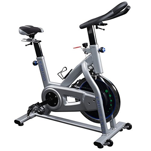 Body Solid Endurance Indoor Cycle
