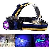 UV linterna frontal LED, evary batería Linterna LED ultravioleta, luz 3modos para foco escorpiones mascota orina dinero falsificado cama Bugs minerales detección de fugas manchas