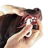 PamperPets Zahnreinigung für Hunde | Zahnsteinentferner mit Nanotechnologie | entfernt Verunreinigungen, ohne Zusätze