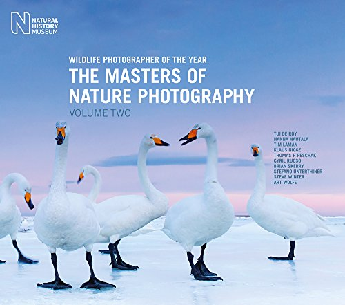 The Masters of Nature Photography: Volume 2: Wildlife Photographer of the Year (Wildlife Photographer of Year)