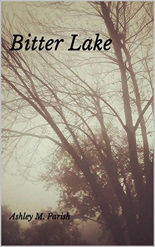 bitter-lake-english-edition