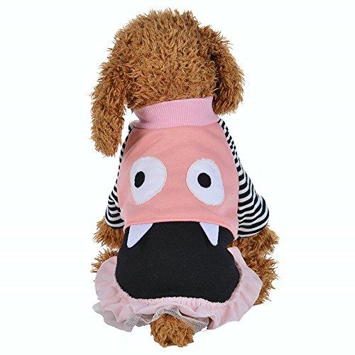 Haustier Kleid,Hund Kleid Spitze Weste Rock für Kleine Hunde Katze Mädchen Bekleidung,Hund/Katze-Haustier-Kleid für Kleine Hunde,Welpen,Schnauzer,Teddy,Pudel,Chihuahua (Rosa, L)