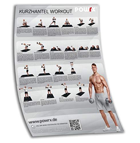 POWRX Trainingsposter Übungsposter Kurzhantel mit den besten 20 Hantel Übungen I DIN A1 Workout Poster versch. Farben Grau