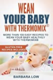 Wean Your Baby with Thermomix: More than 100 easy recipes to wean your baby healthily with Thermomix