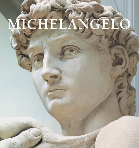 Perfect Square: Michelangelo (Spanish Edition)