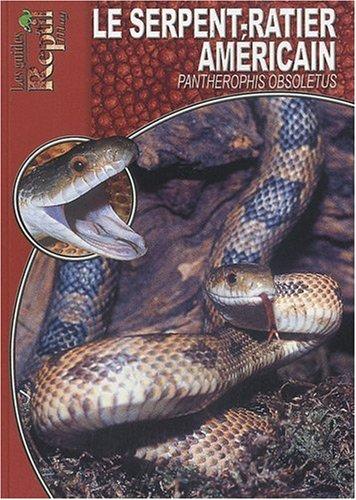 Le Serpent-Ratier Américain: Pantherophis Obsoletus