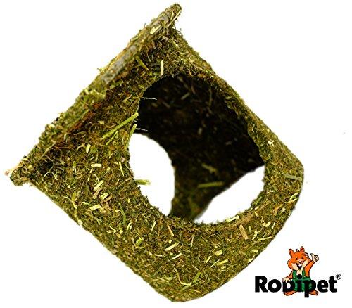 rodipetr-enterrado-bau