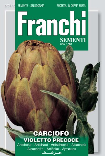 Seeds of Italy Ltd Franchi Artichaut violet