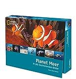 Planet Meer in 365 faszinierenden Bildern - David Hettich