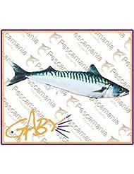 MAQUEREAU Oreiller / Coussin - Pêche En Mer Pêcheurs Cadeau Pères Jour Flexible Jouet