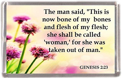 (Sie wird genannt werden Frau Genesis 2: 23machen 12Stück Kühlschrank Magnete 12Geschenk Souvenir Kühlschrank Magnete)