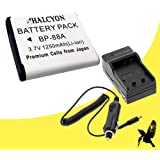 Halcyon 1250 mAH Lithium Ion Replacement Battery and Charger Kit for Samsung DV300F DV300 DV200 Digital Cameras and Samsung BP-88A