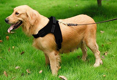 MIDWEC Das Mittelgroße Hunde Haustier einstellbare weiche Brustgeschirr in vier Größen – Schwarz (S) - 5