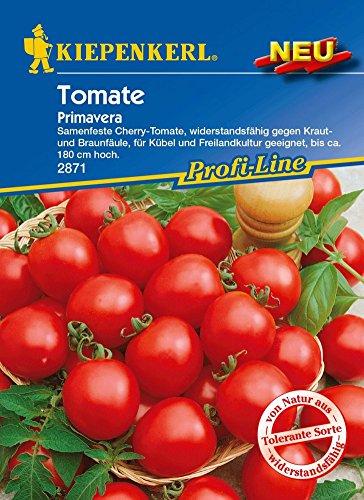 Tomatensamen - Tomate Primavera von Kiepenkerl - Orange Cherry-tomaten