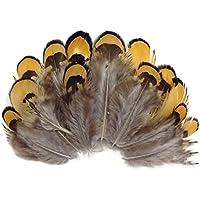 ERGEOB® 100 pezzi di capelli porno pollo