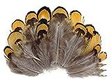 ERGEOB 100 stück Huhn porn Fasanenfedern Haar natürliche Farbe 4-8cm