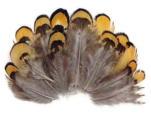 Preisvergleich Produktbild ERGEOB 100 stück Huhn porn Fasanenfedern Haar natürliche Farbe 4-8cm