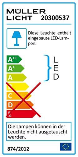 MÜLLER-LICHT LED Feuchtraumleuchte Bulkhead, IP54, Rund, Plastik, 8 W, Weiß, 17.6 x 17.6 x 5.6 cm - 2