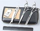SMITH CHU Set Ciseaux Coiffure Professionnel 6 Pouces Coupe de Cheveux Ciseaux Sculpteurs Professionnels Effiler Désépaissir Coiffeur en Acier Inoxydable avec Etui pour Les Hommes et Les Femmes