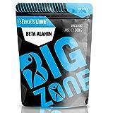 Big Zone Beta-Alanin (500g) Preworkout Booster Aminosäure Aminos Muskelaufbau...