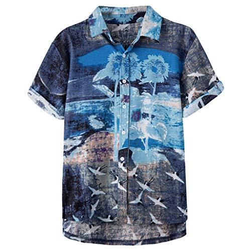 TYTUOO Mens Shirt Ethnic Gedruckt Stehkragen Bunte Streifen Kurzarm Strand Hawaii Lose Tops