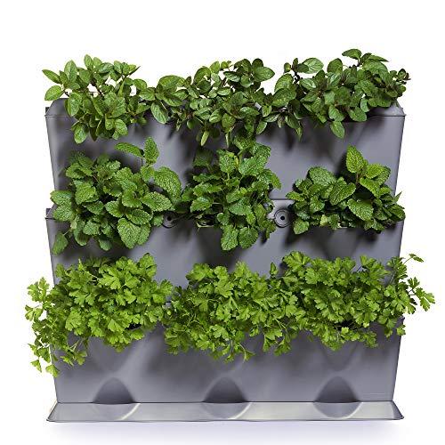 Minigarden Vertical 1 set per 9 piante, Giardino Verticale Modulare e Espandibile, Posizionato Sul Pavimento o Fissato al Muro, Sistema di Drenaggio Innovativo, Lungo Ciclo di Vita (Grigio)