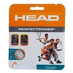 Head Perfect Power Squash Strings