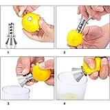tacoli- manuell Zitronenpresse Zitrone Entsafter Ausgießer Schraube Limes Orangen Drizzle Fresh...