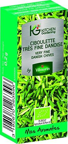 KG BY VILMORIN 8200004 Jardinières Ciboulette très Fine danoise Bio Vert 7 x 3 x 2 cm