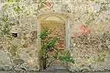 1art1 63826 Mauern - Romantische Garten-Mauer Poster Kunstdruck 120 x 80 cm
