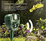 Visa Store MD Group PIR Ultrasonic Animal Repeller Outdoor Garden Expeller Cane Cat Insect Flash Light Repellente
