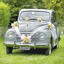 Kit per auto con coccarde TIFFANY e nastro bianco