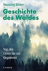 Geschichte des Waldes: Von der Urzeit bis zur Gegenwart