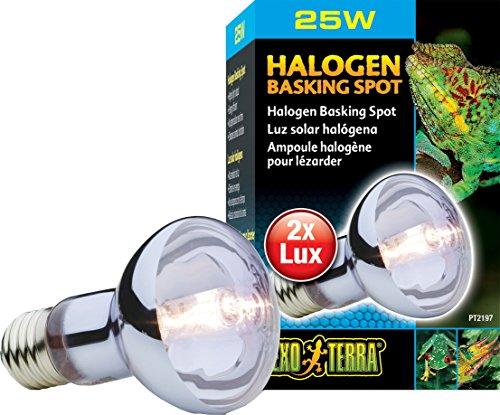 Exo Terra Halogen Basking Spot 25 Watt