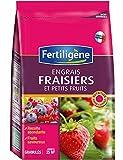 Engrais spécial fraisiers et petits fruits