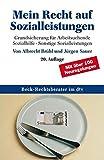 Mein Recht auf Sozialleistungen: Grundsicherung für Arbeitsuchende.Sozialhilfe - Sonstige Sozialleistungen (dtv Beck Rechtsberater) - Albrecht Brühl, Jürgen Sauer