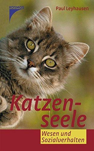Katzenseele: Wesen und Sozialverhalten