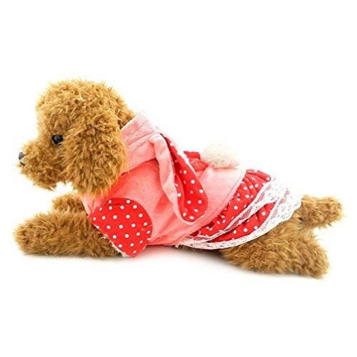 ranphy Lovely warm Bekleidung Puppy Kleidung Samt Hund Kleid Winter Mantel Chihuahua Hoodies Bunny Rock (Dog Rock Kostüm Punk)